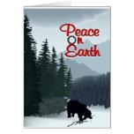 peace bear cards