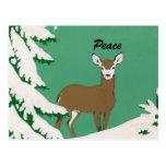 Peace Deer Snow Winter Scene Postcards