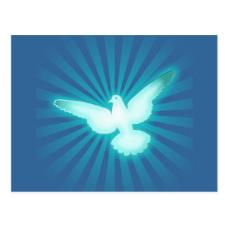 Peace dove postcard