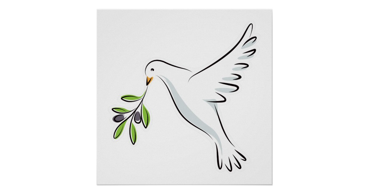 Peace Dove With Olive Branch Poster Zazzle