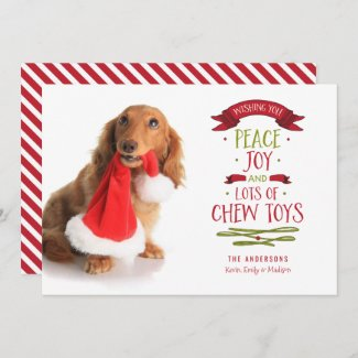 Peace Joy & Chew Toys Holiday Pet Dog Christmas Card