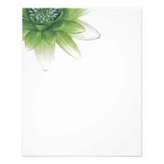 Peace l Beautiful Green Lotus Flower/Water Lily Flyer