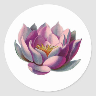 Peace l Beautiful Pink Lotus Flower/Water Lily Classic Round Sticker