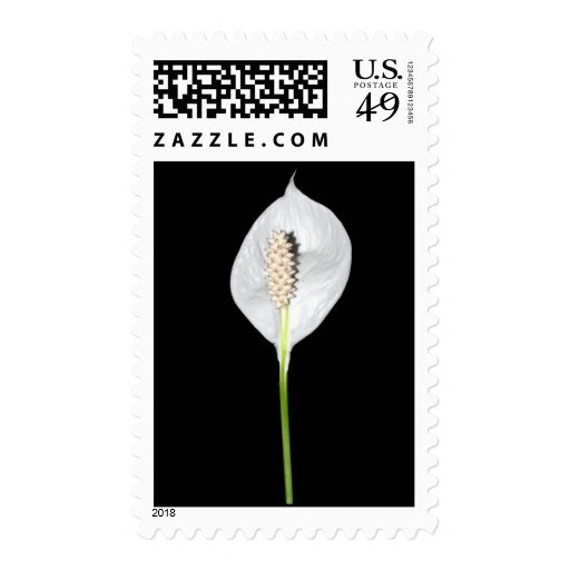 Peace Lily Postage