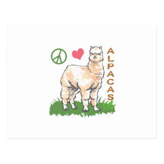PEACE LOVE ALPACAS POSTCARD