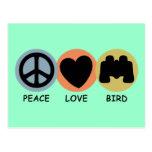 Peace Love Bird Postcard