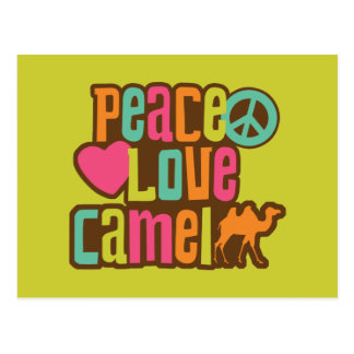Peace Love Camel Post Cards