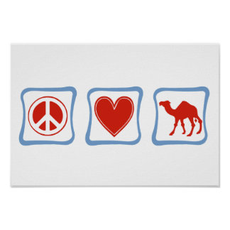 Peace Love Camel squares Poster