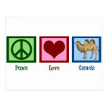 Peace Love Camels Postcard