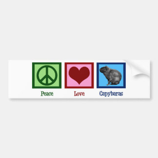 Peace Love Capybaras Bumper Sticker