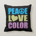 Peace Love Color Pillow