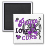 Peace Love Cure 2 Chiari Malformation Refrigerator Magnet