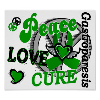 Peace Love Cure 2 Gastroparesis Poster