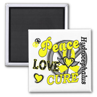 Peace Love Cure 2 Hydrocephalus 2 Inch Square Magnet