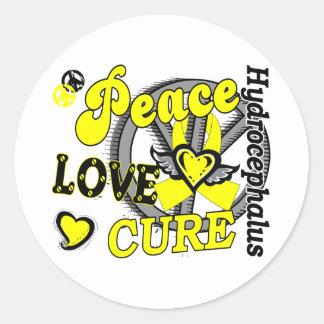 Peace Love Cure 2 Hydrocephalus Classic Round Sticker