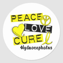 Peace Love Cure Hydrocephalus Classic Round Sticker