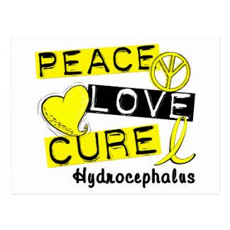 Peace Love Cure Hydrocephalus Post Card
