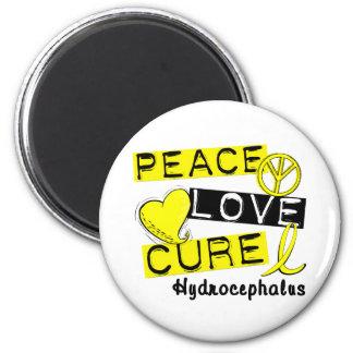 Peace Love Cure Hydrocephalus Refrigerator Magnet