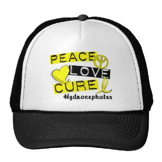 Peace Love Cure Hydrocephalus Trucker Hat