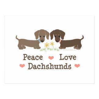 Peace Love Dachshunds Postcard