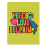 Peace Love Dolphin Post Card