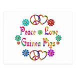 PEACE LOVE GUINEA PIGS POST CARD