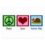 Peace Love Guinea Pigs Post Cards