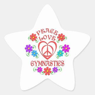 Peace Love Gymnastics Star Sticker