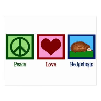 Peace Love Hedgehogs Postcard