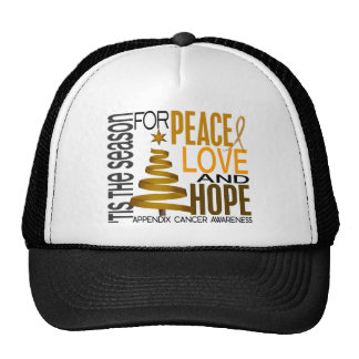 Peace Love Hope Christmas Holiday Appendix Cancer Trucker Hat