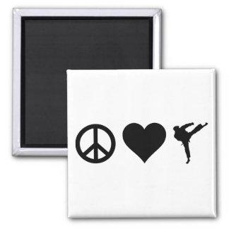 Peace Love Karate Magnet