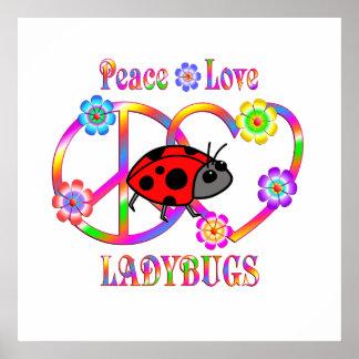 Peace Love Ladybugs Poster