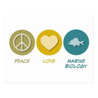 Peace Love Marine Biology Postcard