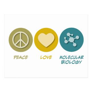 Peace Love Molecular Biology Postcard