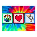 Peace, Love, Pelicans Post Card