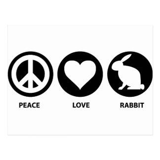 Peace Love Rabbit Postcard