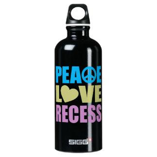Peace Love Recess Aluminum Water Bottle
