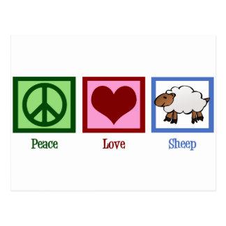 Peace Love Sheep Postcard