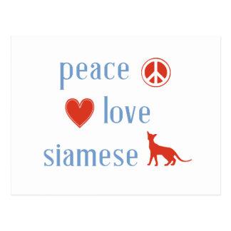 Peace Love Siamese Cats Postcard