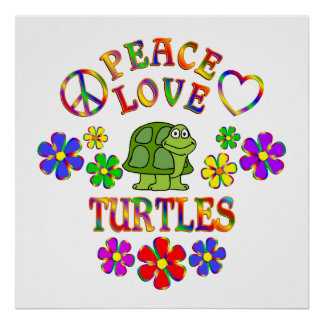 Peace Love Turtles Poster