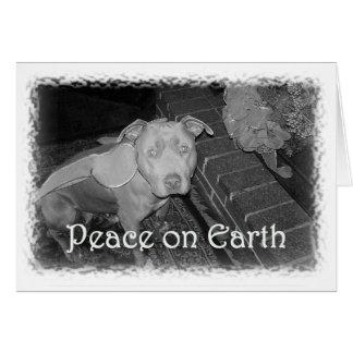 Peace on Earth Christmas card (Pit Bull)