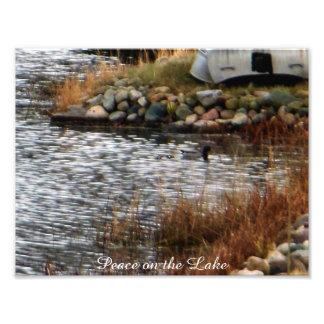 Peace on the Lake Mallard Duck Kodak Photo Print