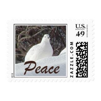 Peace - Ptarmigan Postage Stamp (SMALL)
