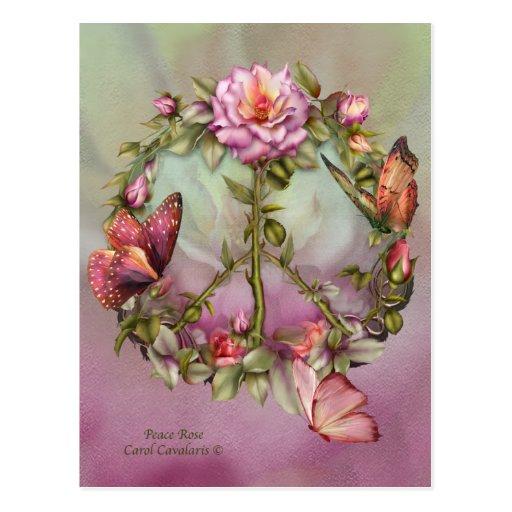 Peace Rose Art Postcard