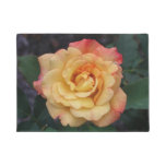 Peace Rose Beautiful Pink and Yellow Floral Doormat