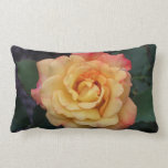 Peace Rose Beautiful Pink and Yellow Floral Lumbar Pillow