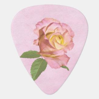 Peace Rose Pick