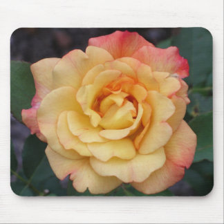 Peace Rose Mouse Pad