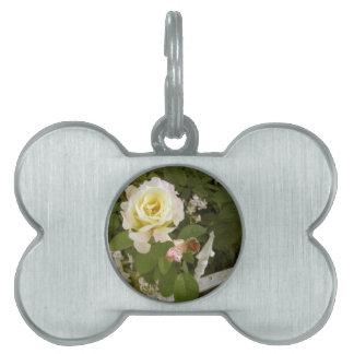 Peace Rose Pet Tag