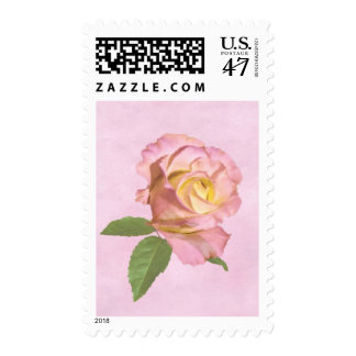 Peace Rose Postage